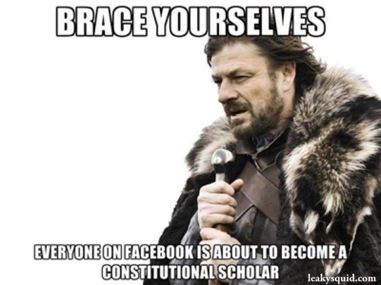 brace yourselves everyone on facebook is about to become a constitutional scholar - Lord of the Rings